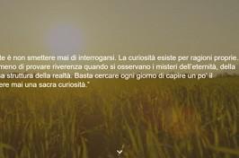 Online il sito di Flaminia Nucci